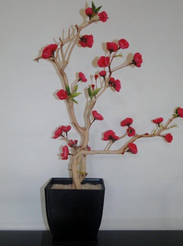 Arboles decorativos rbol genealgico bonito con flores for Arboles decorativos para jardin